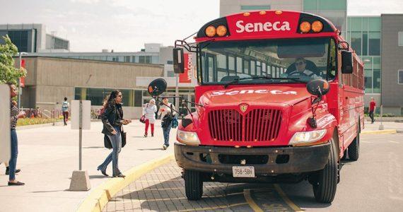 seneca-05.jpg